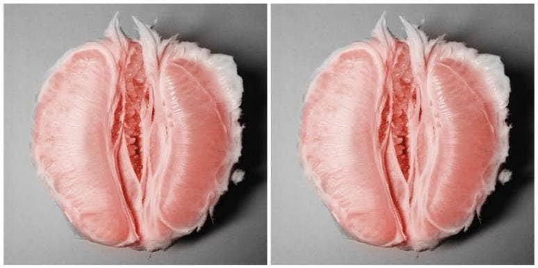 Pics of vaginas