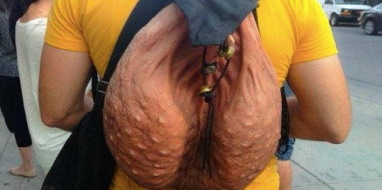 penis scrotum