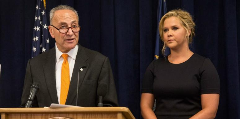 Are Amy Schumer & Senator Charles Schumer Related?