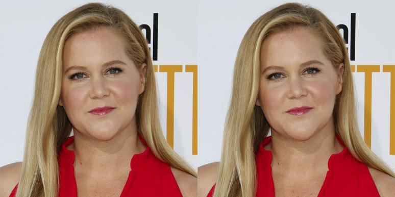 'Expecting Amy' On HBO: Who Is Amy Schumer's Husband? Everything To Know About Chris Fischer
