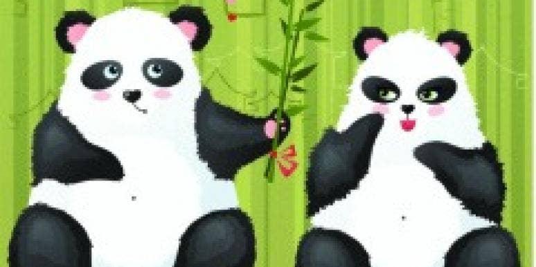blushing pandas love