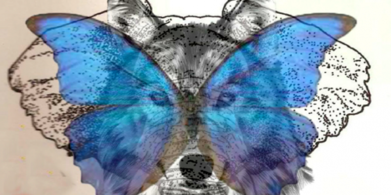 The Animal You See First Reveals How Likely You Are To Cheat