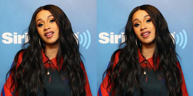 How Many Dogs Does Cardi B Have? Details Comments By Celeb Cardi B Dogs Clapback