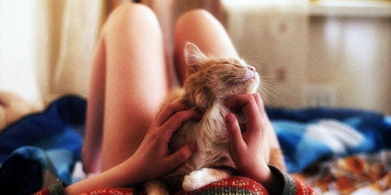Cat or boyfriend?