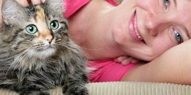 Cat Lovers dating sites Speed Dating evenementen Massachusetts
