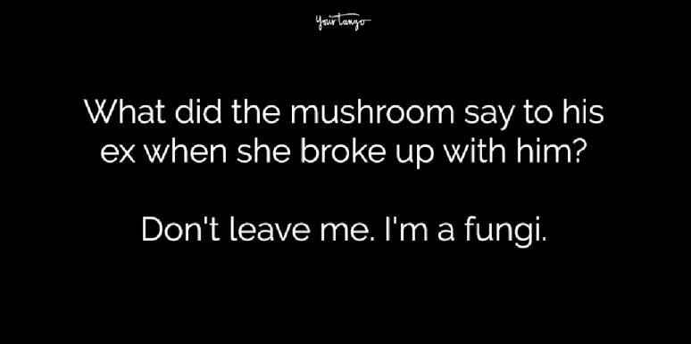 What did the mushroom say to his ex when she broke up with him? Don't leave me. I'm a fungi.