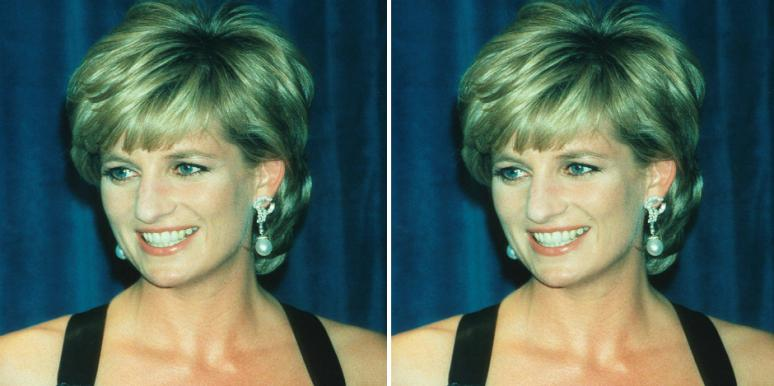Who Is Le Van Thanh? New Details On Driver Of Fiat Who Clipped Princess Diana's Car Causing Crash