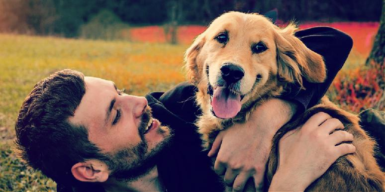 man and dog play in a field, dog thinks man is evil