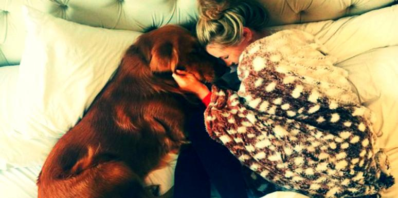 Why Your Emotional Support Animal Doesn't Treat Your Anxiety