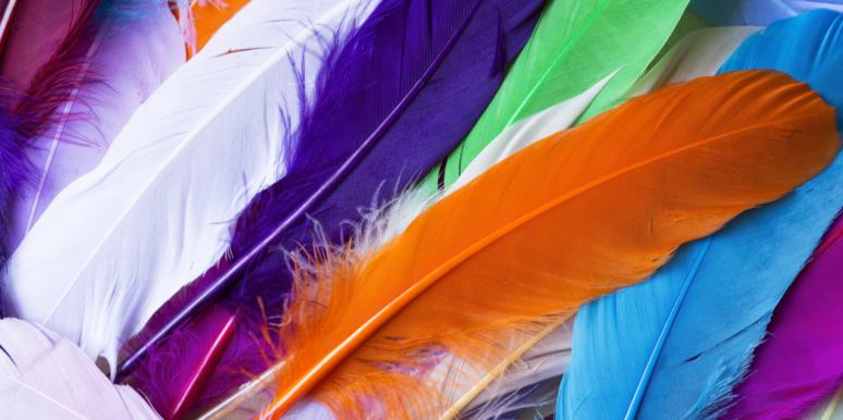 Feather Meanings: Spiritual Meaning & Symbolism Of Feathers
