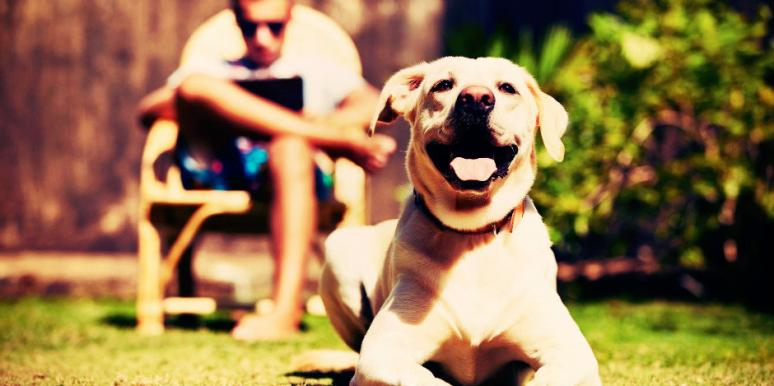 How To Be Happy: The Truth About Your Happiness