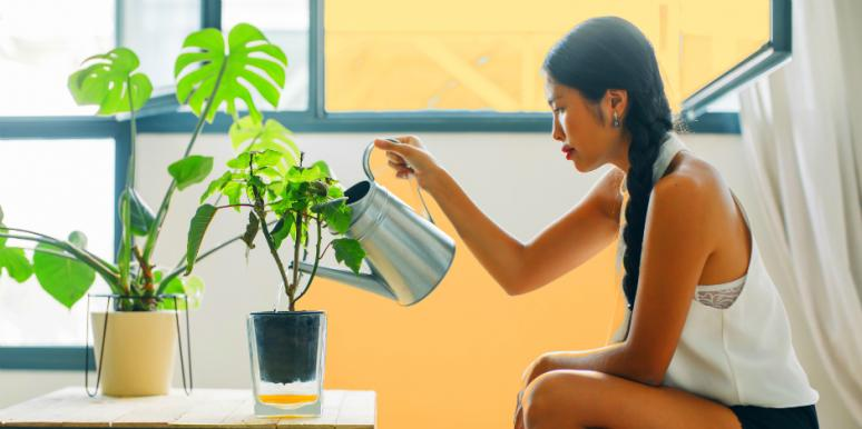 How Your Houseplants Reveal If You're Ready For A Relationship