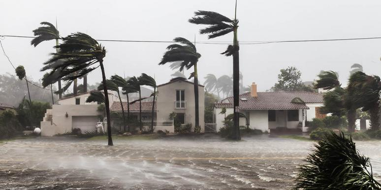How A Hurricane Taught Me To Love My Husband's Crazy Family