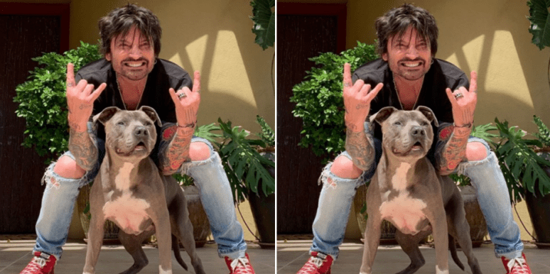 Why Are Tommy Lee And Vince Neil Feuding? New Details On The Motley Crue Members Latest Fallout