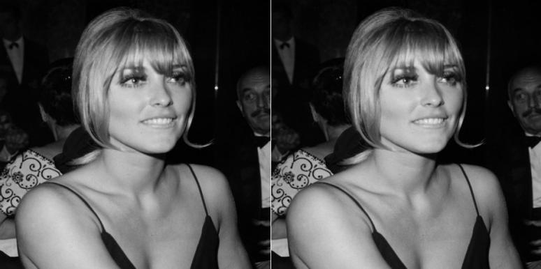 Who Is Ava Roosevelt? New Details On Sharon Tate's BFF Who