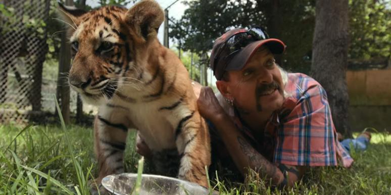 Who Is Joe Exotic? Inside New 'Tiger King' Netflix Show About Tiger Breeder Who Plots Murder-For-Hire