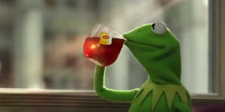 The Kermit Tea Meme History & Meaning Explained
