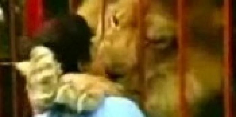Video: She Ain't Lion