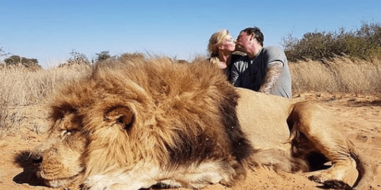 Who Are Darren And Carolyn Carter? New Details On Couple Who Took Romantic Photo In Front Of Dead Lion They Killed