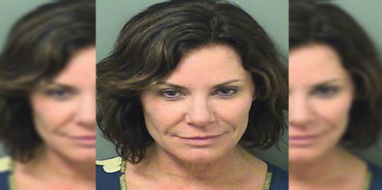 Luann de Lesseps was arrested Sunday for attacking officer, breaking into hotel room