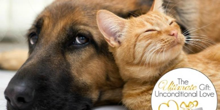 The Ultimate Gift: Unconditional Love