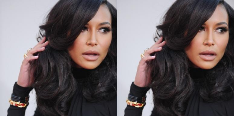 Naya Rivera assault husband