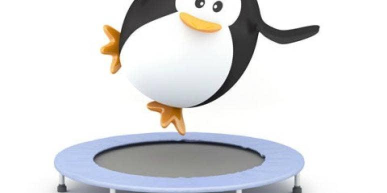 penguin on trampoline