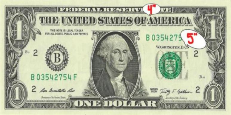 one dollar bill used to measure penis size