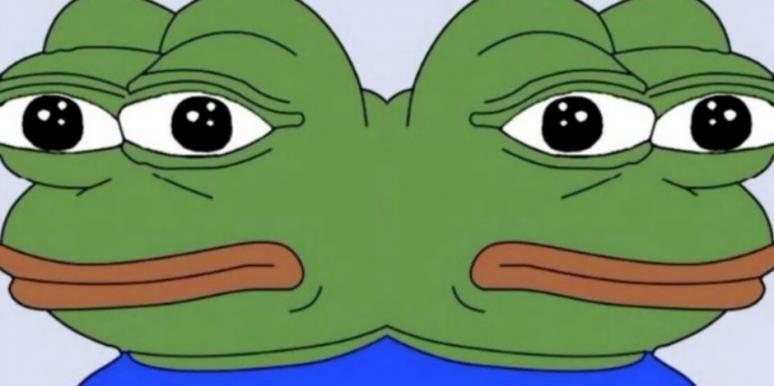 pepe?itok=hKQxyrqI what does the \