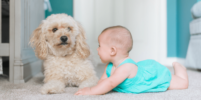 The Best Baby Names For Boys And Girls For Each Zodiac Sign In Astrology
