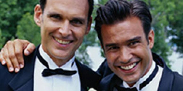 gay couple same sex marriage