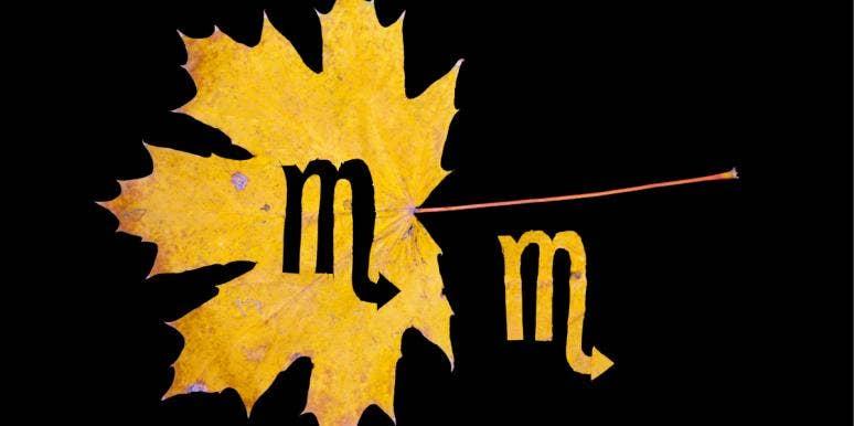 scorpio season symbol