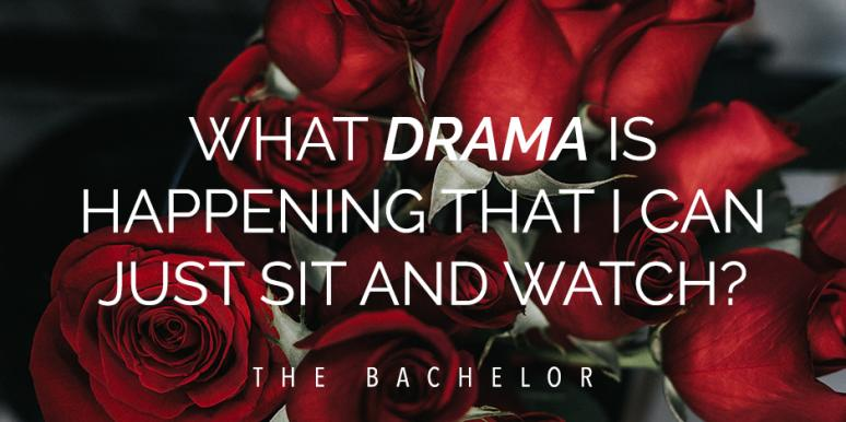 20 Best Iconic Quotes From 'The Bachelor' Every Fan Remembers