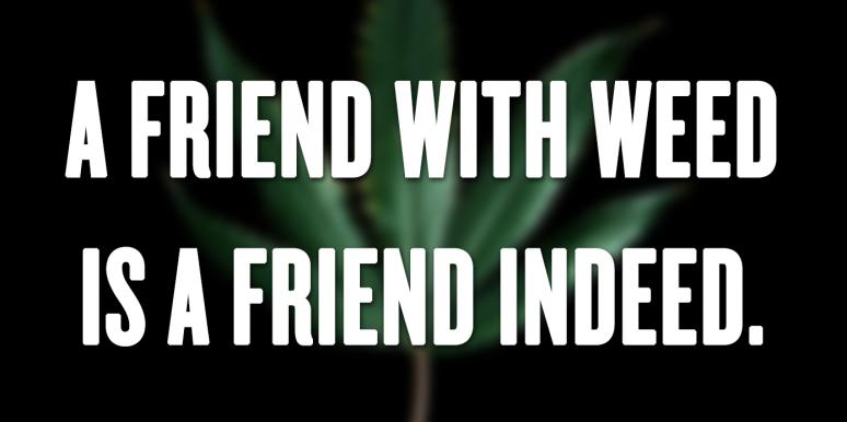 The 35 Best Weed And Marijuana Quotes About The Benefits Of Cannabis