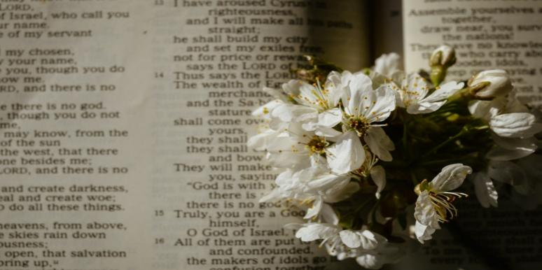 flowers in front of scripture