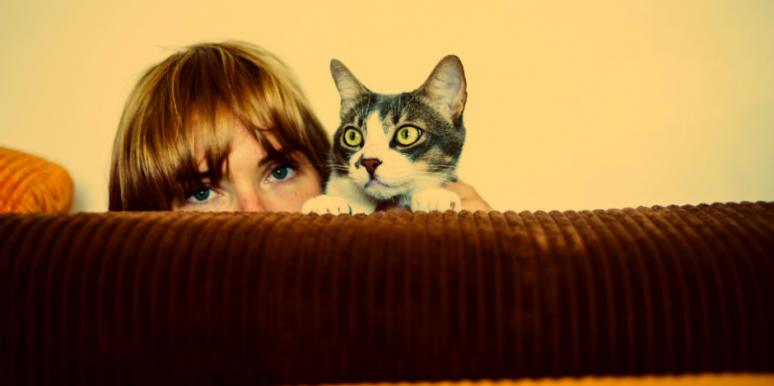 What It Means When You Dream About Cats Or See One