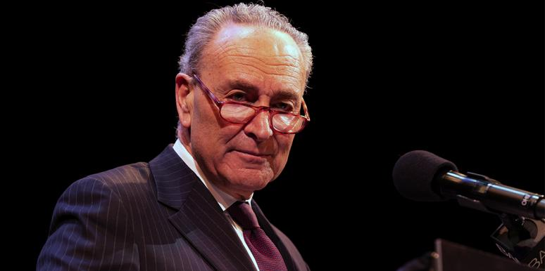 Who Is Chuck Schumer's Wife, Iris Weinshall?