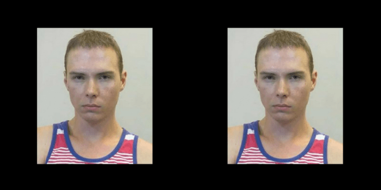 Who Is Luka Magnotta? New Details On Wannabe Serial Killer At Center Of Manhunt In Netflix Documentary 'Don't F*ck With Cats'
