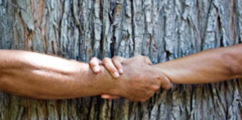 environment green tree-hugger