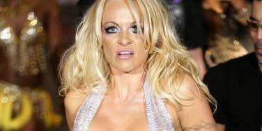 """<a href=""""http://cdn.3news.co.nz/3news/AM/0-Articles/232803/pamela-anderson_wenn_1200.jpg""""/>Pamela Anderson</a>"""