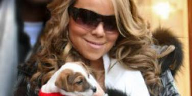 Is Mariah Carey pregnant?