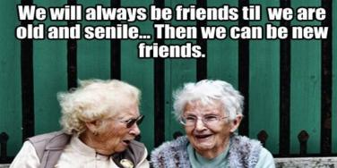 30 Funny Friendship Quotes To Use On Instagram Captions