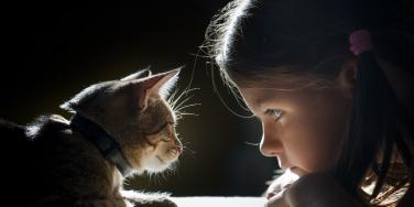 little girl and a cat