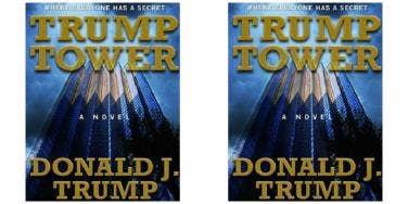 donald trump wrote s&m romance novel