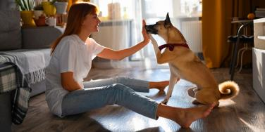 woman high five-ing a dog