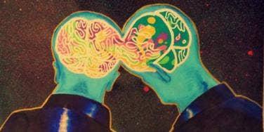 brains in love