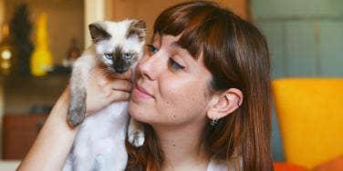 35 Best Cat Puns