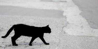 60 Common Superstitions People Around The World Believe In