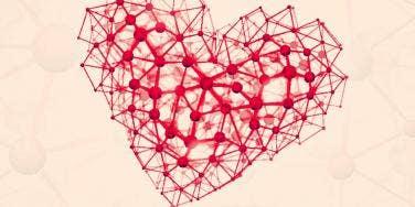 dna heart