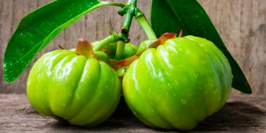 What Is Garcinia Cambogia, And What Should You Use It For?